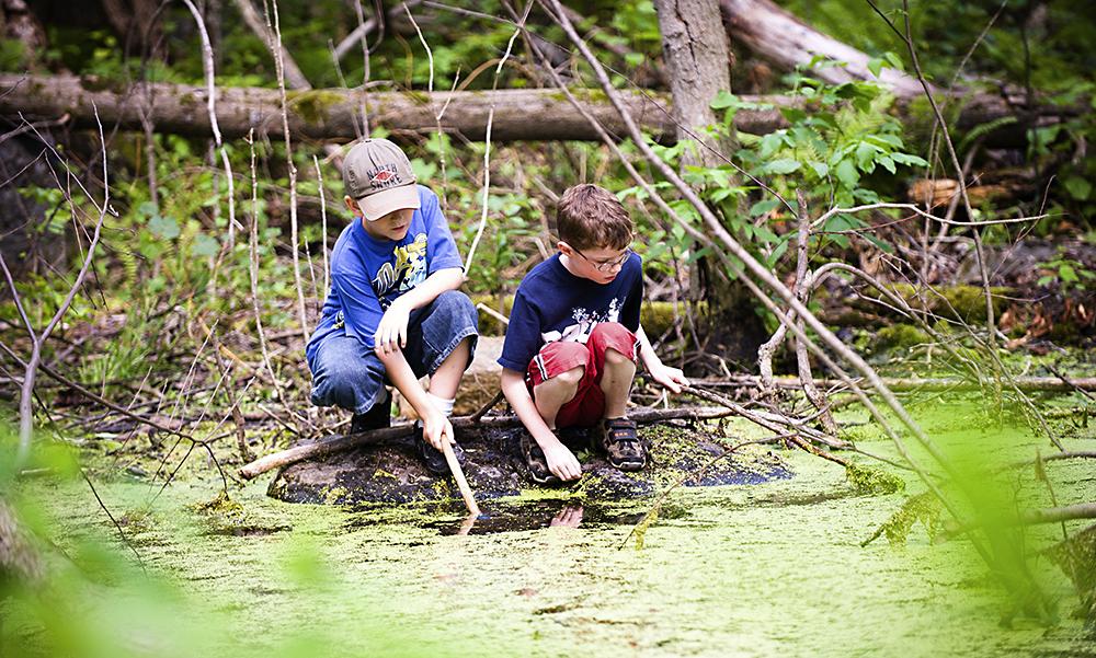 Kaksi pikkupoikaa uittaa keppejä metsälammen rannalla.